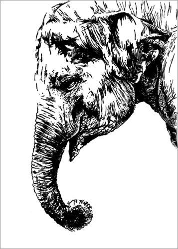 Poster 50 x 70 cm: Linoldruck Elefant von Dominique Fischer - hochwertiger Kunstdruck, neues...
