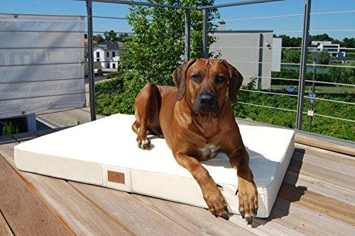 tierlando® Mobile Hundematratze HUGO BASIC | Gehobene Stabilität & Qualität! | Anti-Haar Polyester | M 80 x 60 x 13 cm | Schwarz - 2
