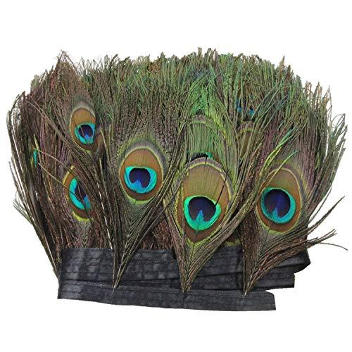 PANAX Echte Pfauenfedern auf 200cm Stoffstreifen - ca. 15-20cm Federnlänge, Fasching Karneval, Dekoration, Basteln, Kostüme, Variante ()