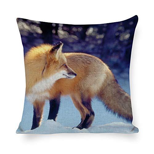 Dartys Pillow Cover Fox Snow Hunting Waiting Tail Winter Predator Baumwolle und Leinen Pillowcase- Klassische Mode- Streifen-Bunte- 18×18 - Zoll - Kissen - Snow Tail Fox