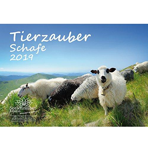 Tierzauber Schafe · DIN A4 · Premium Kalender 2019 · Bauernhof · Natur · Tiere · Edition Seelenzauber