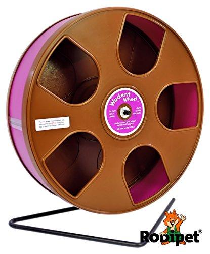 ø 27 cm Hamsterlaufrad Wodent Wheel braun/purpur
