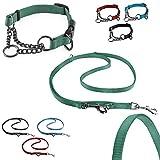 CarlCurt - Training Line: Retriever-Halsband & 6 in 1 Multifunktionshundeleine Im Set Aus Strapazierfähigem Nylon, L 43-60cm & L 1,90m, Grün