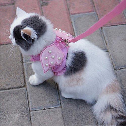 dig, Komfort Cat & Dog & Kitty & Puppy Sicherheit Vest Walking Harness + Passende Leine Leine Engel Flügel Kostüm Spitze Löst Design, Medium, Rose ()