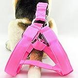 Ericoy Bequem Safty LED Licht Nylon Haustier Leine Hund Kette Leine Hundegeschirr mit einem Flash-Leucht Gurte (Rosa S)
