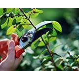 Skycandle Garden Scissor Flower Cutter Leaf Cutter with Safety Lock Best for Gardening, (Color May Vary)