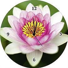 Artland Reloj de silenciosa de calidad de pared digital de impresión sobre vidrio Hanibal Barca Aqua Mesas Lotus–Nenúfar Botánica flores nenúfar fotografía Rosa/Rosa 35x 35x 1,8cm