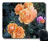 Custom Gaming Maus Pad mit Rosen Blumen Büsche Garten sanften rutschfestem Neopren Gummi Standard Größe 22,9cm (220mm) X 17,8cm (180mm) X 1/8(3mm) Desktop Mousepad Laptop Mousepads bequem Computer Mauspad