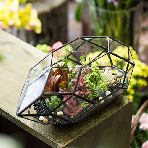 YIWAI Blumentopf 32 Seiten Geometrische Terrarium Desktop Garten Glas Bonsai Pflanzgefäß Topf Runde Jar Container Für Blume Sukkulenten Pflanzen Farn Moos