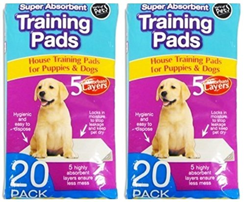 40-x-Super-Absorbent-Large-Puppy-Pet-Training-Pads-60-x-45cm-5-Layers