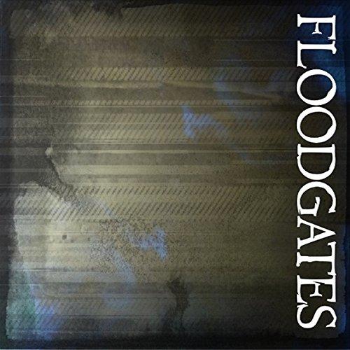 Floodgates - Single
