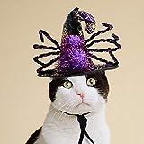 Mascota Víspera De Todos Los Santos Bruja Mago Sombrero Perro Gato Gracioso Araña Sombrero Headwear Disfraz para Fiesta, Sesión De Fotos. Cacoffay