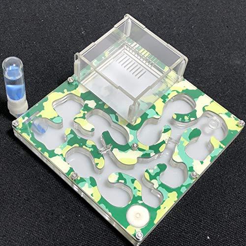 140 * 140mm Grand Espace Camouflage AntHouse Fourmiliere Éducatif avec Alimentation en Eau et en Eau pour Fourmis en Direct (Camouflage Summer)