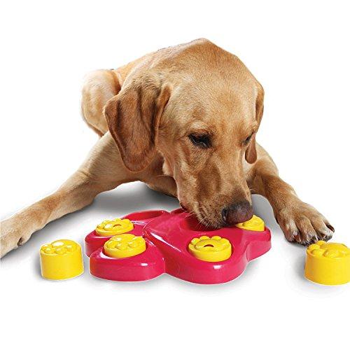 Intelligenzspielzeug Hunde Spielzeug Interaktiven Hund Pfote-Form Spielzeug Hochwertige PET Hund Training Activity Spiel Puzzlespiel Verlangsamung-Essen Hunde Schüssel (Wie Zu Reinigen Sto)
