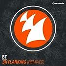 Skylarking (Remixes)