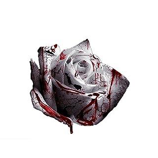 Hemore 120pcs Saatgut seltenste weiße Blut Rose Pflanze blumenkerne Blumengarten Asaka seltene echte Blut Rosen Samen