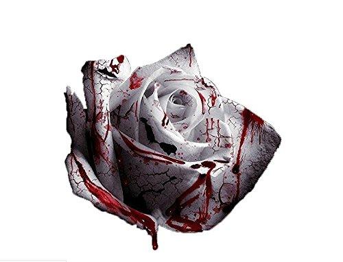 Hemore Semilla de semilla más RARA Sangre Rosa Planta Flor Semillas jardín de Flores Asaka raros verdadera Sangre Rosa Blanca 120pcs