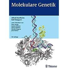 Molekulare Genetik