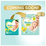 Pampers Premium Protection Baby Windeln, Gr.2 Mini (4-8 kg), Value Pack, 1er Pack (1 x 54 Stück)