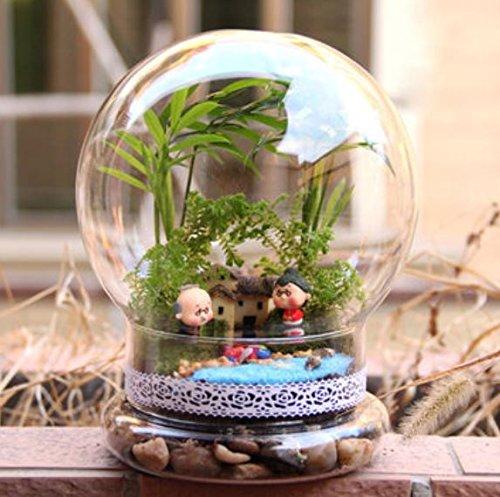 Leuchtmittel geformte DIY Moos Micro Landschaft Glas Flasche Sukkulenten Vase Home Dekoration von shopidea