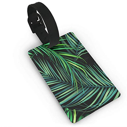 Ewtretr Kofferanhänger,Gepäckanhänger, Hawaiian Tropical Palm Leaves Luggage Tags for Suitcases Business Card Holder,Travel Accessories -