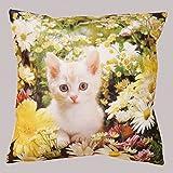 heimtexland Kissen mit hochwertigem Digitaldruck auf samtig weicher Qualität - süße Katze auf Blumenwiese - Kissenhülle Sommer 40x40 cm Typ313