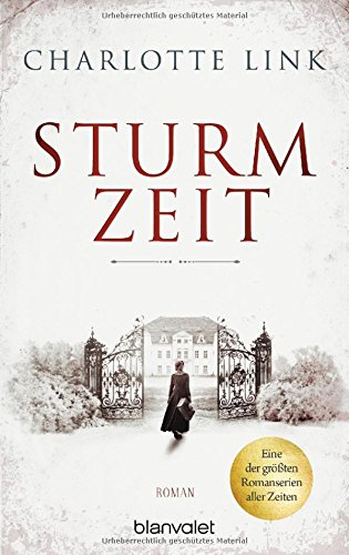 Sturmzeit Bd. 1