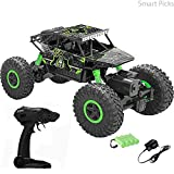 Smart Picks 1:18 Rechargeable 4Wd Rally Car Rock R/C Monster Truck (Green)