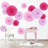 feelshion 15pcs DIY Flores de papel Decoración Kit, Tissue Pompom Juego para cumpleaños/fiesta/Boda/Nochevieja. Baby ducha (Rosa y Lila)