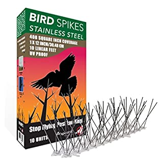Aspectek Stainless Steel Bird Spikes Kit, 10 Feet (3 Metre). Perfect Bird Gel Deterrent (Without Glue)