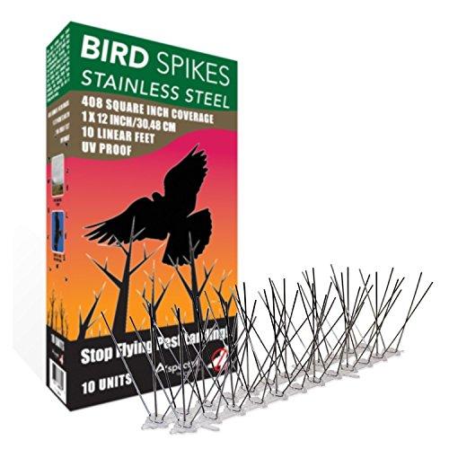 Aspectek rostfreie Vogel-Spikes Kit PRO, 10 Fuß (3 Meter) Perfektes Abwehrmittel gegen Vögel (ohne Kleber)