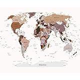 decomonkey | Fototapete Weltkarte Landkarte Kontinent 250x175 cm XL | Design Tapete | Fototapeten | Vlies Tapeten | Vliestapete | Wandtapete | moderne Wanddeko | Wand Dekoration Schlafzimmer Wohnzimmer | Rose | FOB0211c5XL