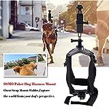 Faironly Hundegeschirr mit Brustgurt-Halterung, verstellbar, für den Außenbereich, für Osmo-Tasche, Hero 6/5/4/3+, Session DBPOWER Akaso, Sony Sports DV etc. Kamera Standard