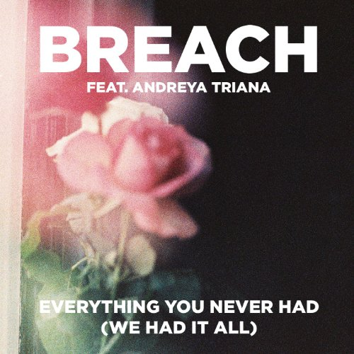 Everything You Never Had (We Had It All) [feat. Andreya Triana] (Extended Club Version)