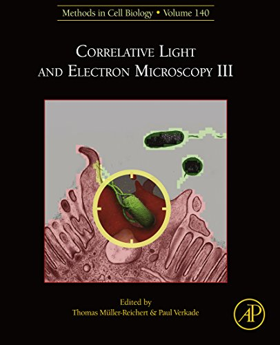 Correlative Light and Electron Microscopy III (Methods in Cell Biology Book 140) (English Edition)