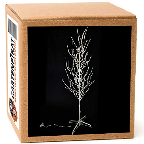 Gartenpirat LED Baum für außen 160 cm 200 LED warmweiß Lichterbaum weiß Outdoor