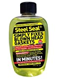 Best Head Gasket Sealers - Steel Seal Motorbike/Scooter Blown Cylinder Head Gasket Fix Review