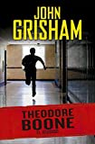 El Acusado / Theodore Boone: The Accused #3