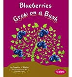 Blueberries Grow on a Bush (Pebble Books: How Fruits and Vegetables Grow (Library)) (Hardback) - Common