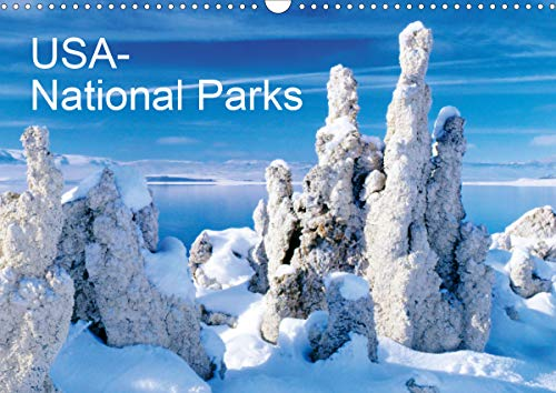 USA - National Parks (Wall Calendar 2020 DIN A3 Landscape): Pictures from different Nationalparks from the USA (Monthly calendar, 14 pages ) (Calvendo Places)