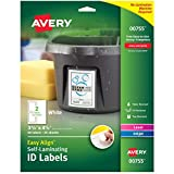 Best Avery Laminatings - Avery Dennison AVE-00755 Easy Align Self-Laminating ID Labels Review