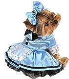 Alice im Wunderland Stil - Hunde Katzen Kostüm Verkleidung -
