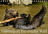 Bären im Nationalpark Bayerischer Wald (Tischkalender 2020 DIN A5 quer): Die Geschwister Luna und Benni (Monatskalender, 14 Seiten ) (CALVENDO Tiere) -
