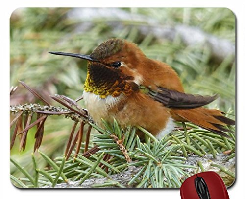 allens-hummingbird-mouse-pad-computer-mousepad