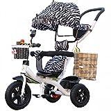 Wu Kinder Dreirad Fahrrad Kinderwagen Fahrrad mit Carport, Multifunktionale Baby 1-6 Kinderwagen,C