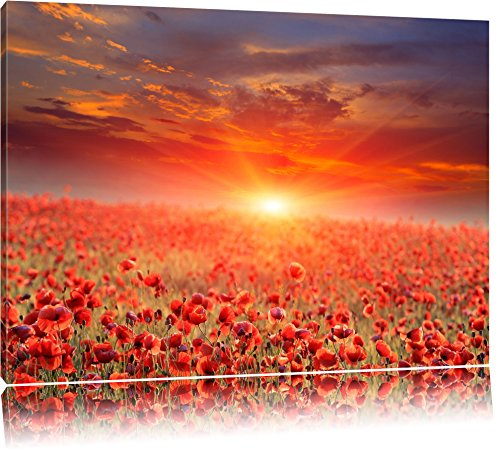 Campo de flores de amapola al atardecer Formato: lienzo 60x40, XXL enormes imágenes completamente enmarcadas con camilla, la lámina en cuadro de la pared con el marco, más barato que las pinturas al óleo y la imagen, hay cartel o póster