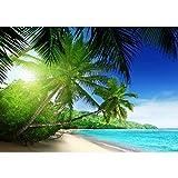 Fototapete 300x210 cm - ALLE TOPSELLER auf einen Blick ! Vlies PREMIUM PLUS - PARADISE BEACH - Strand Meer Palmen Beach 3D Ozean Palme - no. 005