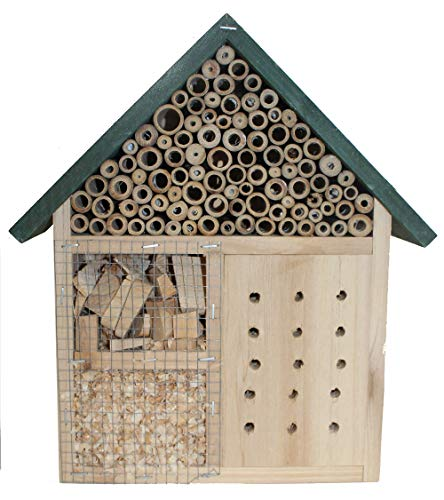Stolz Insektenhotel Nistkasten Brutkasten für Schmetterlinge Bienen Käfer (Grün (groß))