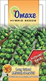Brussels Sprouts Long Island 100 Seeds x 2 Packets