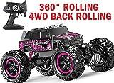 Aodatu Ferngesteuertes Auto Lila 360 ° Stunt Flip wasserdichte Monster Truck, RC Auto 1:14 4WD Offroad Junge und Mädchen Erwachsene Kinder können das Spielzeug steuern